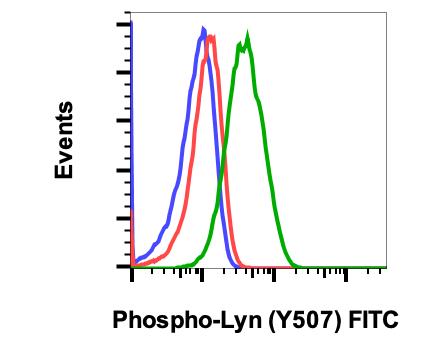Phospho-Lyn (Tyr507) (Clone: 5B6) rabbit mAb FITC conjugate