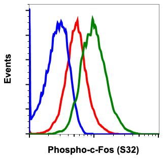 Phospho-c-Fos (Ser32) (Clone: BA9) rabbit mAb