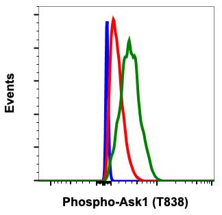 Phospho-Ask1 (Thr838) (Clone: 8D12) rabbit mAb