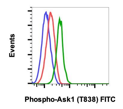 Phospho-Ask1 (Thr838) (Clone: 8D12) rabbit mAb FITC Conjugate