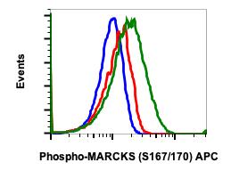Phospho-MARCKS (Ser167/170) (Clone: C9) rabbit mAb APC conjugate