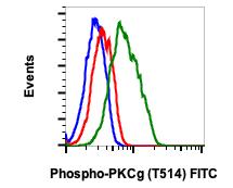 Phospho-PKC (pan) (Clone: gamma Thr514) (Clone: PF4) rabbit mAb FITC conjugate