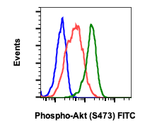 Phospho-Akt1 (Ser473) (Clone: B9) rabbit mAb FITC conjugate