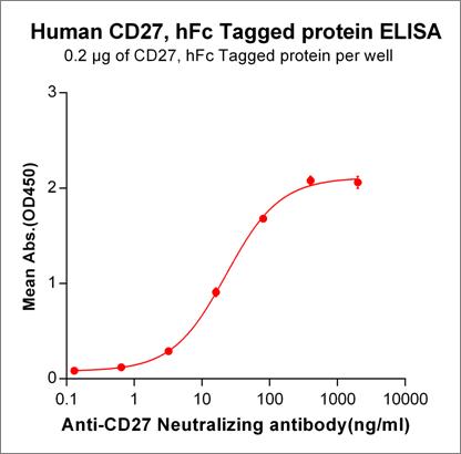 Anti-CD27 Antibody (varlilumab biosimilar) (1F5)