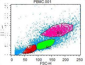 Human Peripheral Blood CD19/CD27 Memory B Cells