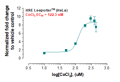 HRE Leeporter™ Luciferase Reporter-HeLa Cell Line