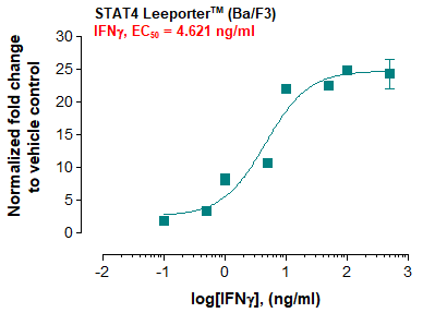 STAT4 Leeporter™ Luciferase Reporter-Ba/F3 Cell Line