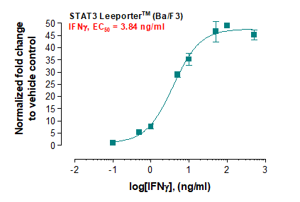 STAT3 Leeporter™ Luciferase Reporter-Ba/F3 Cell Line