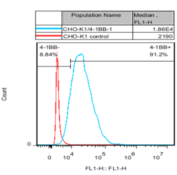 4-1BB Stable Cell Line-CHO-K1-Human