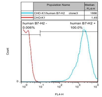 B7-H2 Stable Cell Line-CHO-K1-Human(Currently Unavailable)