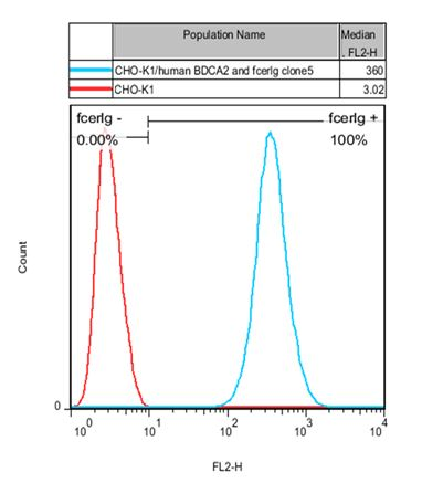 BDCA2 and FcER1G Stable Cell Line-CHO-K1-Human(Currently Unavailable)