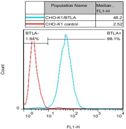 BTLA Stable Cell Line-CHO-K1-Human(Currently Unavailable)