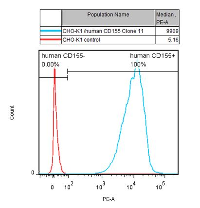 CD155 Stable Cell Line-CHO-K1-Human