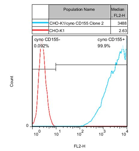 CD155 Stable Cell Line-CHO-K1-Cynomolgus