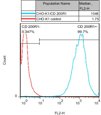 CD200 R1 Stable Cell Line-CHO-K1-Human