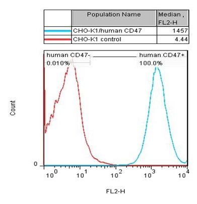 CD47 Stable Cell Line-CHO-K1-Human(Currently Unavailable)