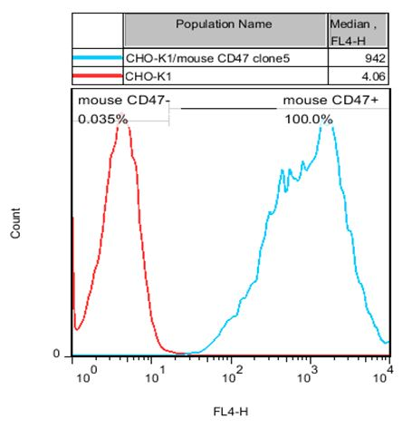 CD47 Stable Cell Line-CHO-K1-Mouse(Currently Unavailable)