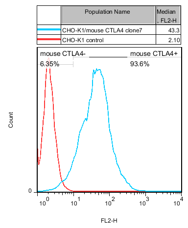 CTLA4 Stable Cell Line-CHO-K1-Mouse(Currently Unavailable)