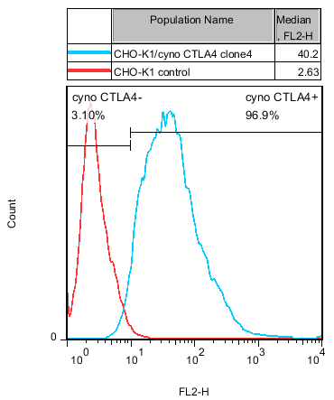 CTLA4 Stable Cell Line-CHO-K1-Cynomolgus(Currently Unavailable)