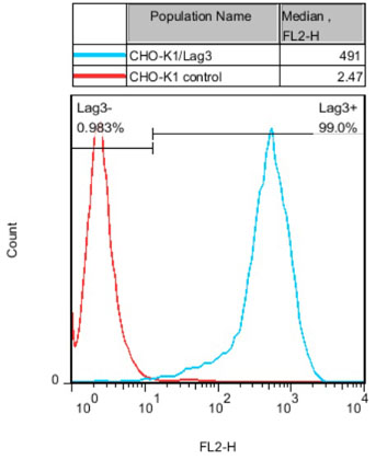 Lag3 Stable Cell Line-CHO-K1-Human(Currently Unavailable)