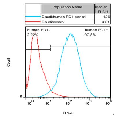 PD1 Stable Cell Line-Daudi-Human