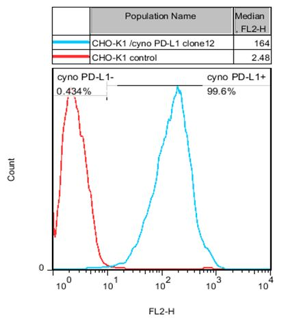 PD-L1 Stable Cell Line-CHO-K1-Cynomolgus(Currently Unavailable)