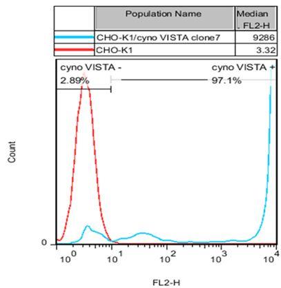 VISTA Stable Cell Line-CHO-K1-Cynomolgus
