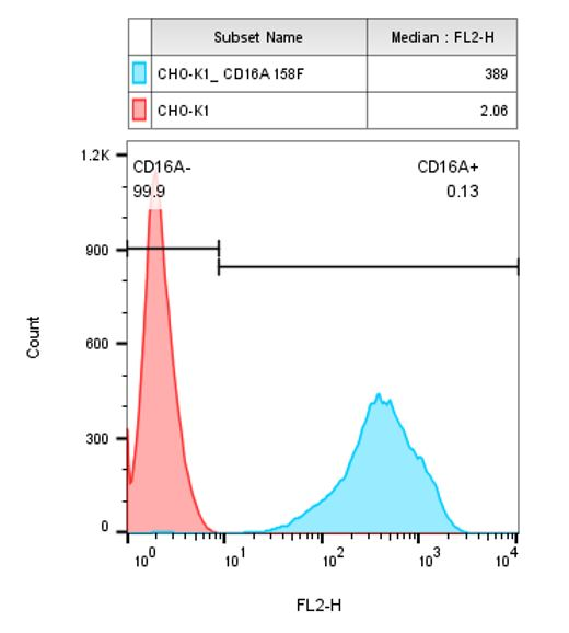 CD16A 158F Stable Cell Line-CHO-K1-Human