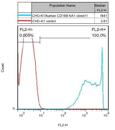 CD16B Stable Cell Line-CHO-K1-Human