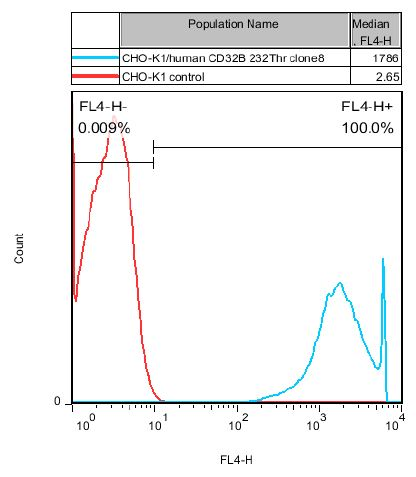 CD32B 232Thr Stable Cell Line-CHO-K1-Human(Currently Unavailable)