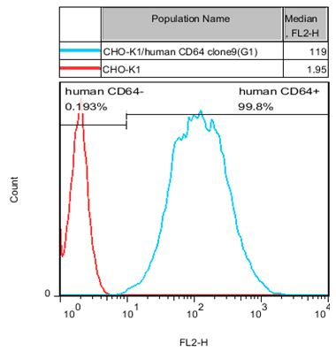 CD64 Stable Cell Line-CHO-K1-Human