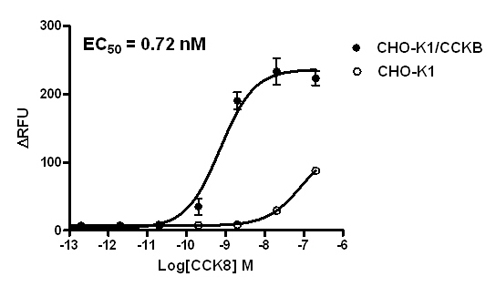 CCKB Stable Cell Line-CHO-K1-Human(Currently Unavailable)