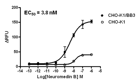 BB3 Stable Cell Line-CHO-K1-Human(Currently Unavailable)