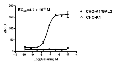 GAL2 Stable Cell Line-CHO-K1-Human(Currently Unavailable)