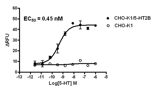 5-HT2B Stable Cell Line-CHO-K1-Human