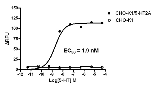 5-HT2A Stable Cell Line-CHO-K1-Human(Currently Unavailable)