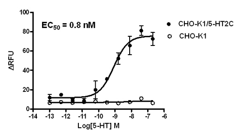 5-HT2C Stable Cell Line-CHO-K1-Human(Currently Unavailable)