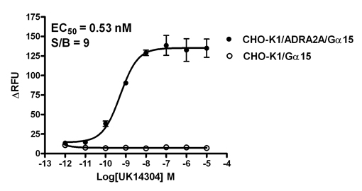 G alpha 15 Stable Cell Line-ADRA2A-CHO-K1-Human(Currently Unavailable)