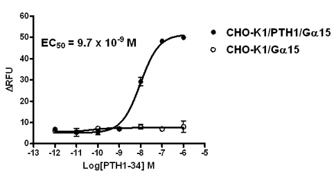 G alpha 15 Stable Cell Line-PTH1-CHO-K1-Human(Currently Unavailable)