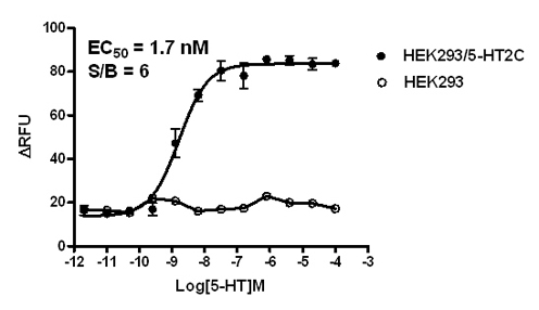 5-HT2C Stable Cell Line-HEK293-Human(Currently Unavailable)