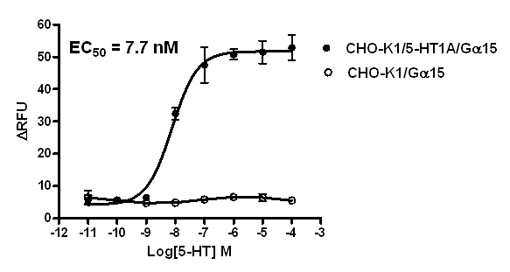 G alpha 15 Stable Cell Line-5-HT1A-CHO-K1-Human(Currently Unavailable)
