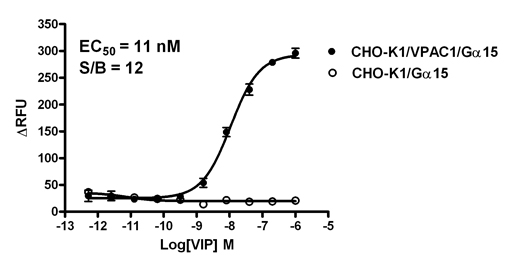 G alpha 15 Stable Cell Line-VPAC1-CHO-K1-Human(Currently Unavailable)