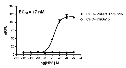 G alpha 15 Stable Cell Line-NPS1b-CHO-K1-Human(Currently Unavailable)