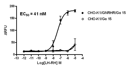 G alpha 15 Stable Cell Line-GNRHR-CHO-K1-Human(Currently Unavailable)