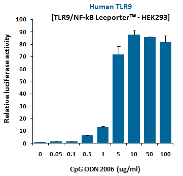 CpG ODN (2006), TLR9 ligand (Class B)