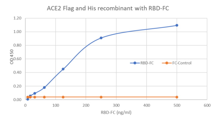Recombinant Human ACE2 His and FLAG Tag