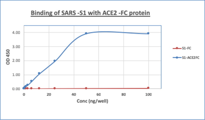 SARS CoV2 Spike RBD Protein His Tag (319-541aa)