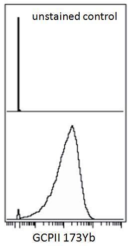 Anti-GCPII / PSMA Monoclonal Antibody (Clone:GCP-05)