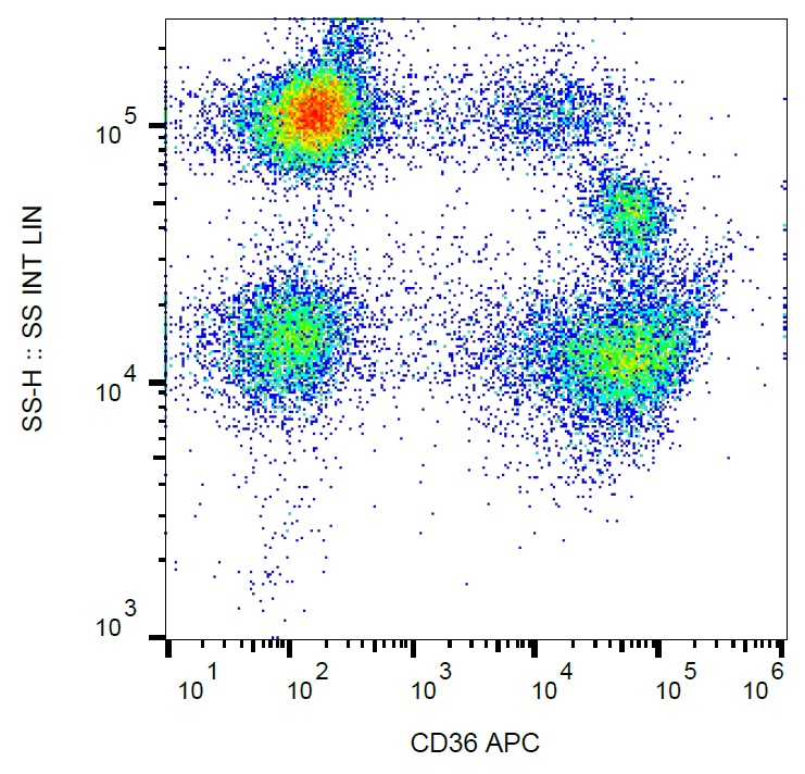 Anti-CD36 / GPIIIb Monoclonal Antibody (Clone:TR9)-APC Conjugated