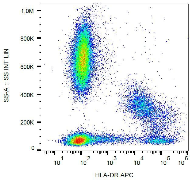 Anti-HLA-DR Monoclonal Antibody (Clone:MEM-12)-APC Conjugated